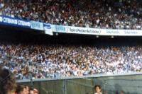 Schalke-Fans beim 1. FC Köln in Müngersdorf, Mitte der 90er Jahre
