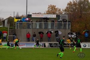 FC Pipinsried vs. 1. FC Schweinfurt