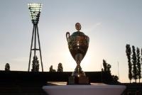 Berliner Pilsner Pokal, Landespokal