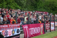 Fans des BFC Dynamo zu Gast im Berliner Poststadion