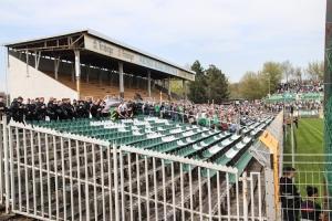 BSG Chemie Leipzig vs. BFC Dynamo