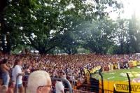 Fans von Dynamo Dresden in Cottbus (1995)