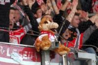 FC Energie Cottbus beim F.C. Hansa Rostock
