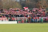 Fans des FSV Zwickau im Sportforum Sojus 31