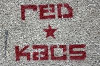 Red Kaos des FSV Zwickau