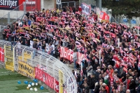 Schalparade im Fanblock des FSV Zwickau