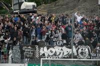 Fans des SV Elversberg im Waldstadion