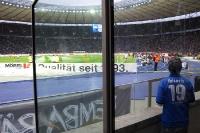 Einsamer Fan der TSG Hoffenheim