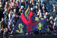 Pogoń Szczecin vs. Cracovia Krakow, 09.03.2014