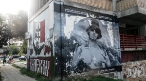 Vojvodina Novi Sad vs. Roter Stern Belgrad