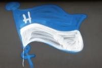 Willkommen bei Hertha BSC im Berliner Olympiastadion!