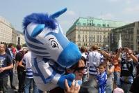 Zebrastreifen weiß und blau: Fans des MSV Duisburg in Berlin beim DFB-Pokalfinale 2011