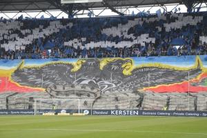 MSV Duisburg Choreo gegen Düsseldorf