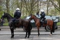 Hamburger Polizei hoch zu Ross