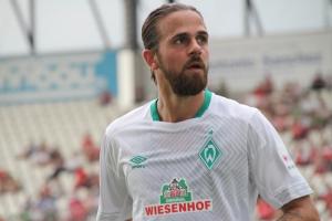 Martin Harnik Werder Bremen 2018
