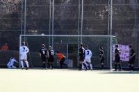 Ein Tor, das nicht gegeben wurde... Tennis Borussia Berlin zu Gast beim Berliner SC