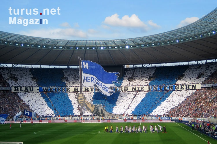 Hertha BSC, Supporters in