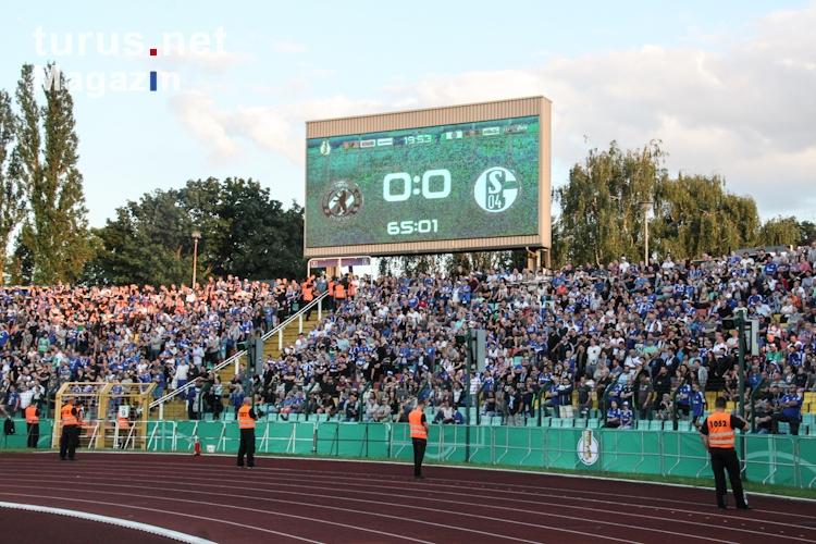 Bfc Dynamo Schalke