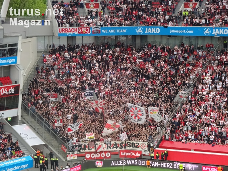 VfB Stuttgart Fans in Leverkusen April 2018