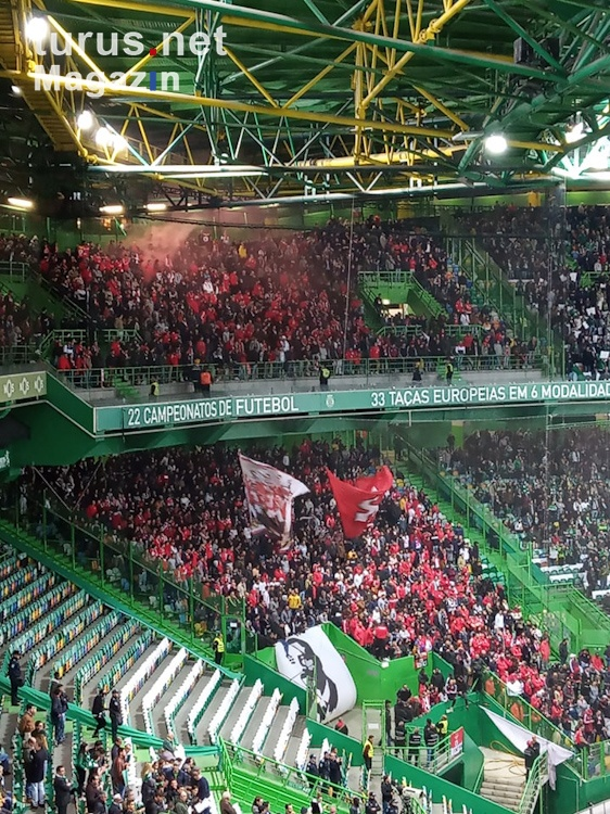 sporting_vs_benfica_20190403_1355895549.jpg