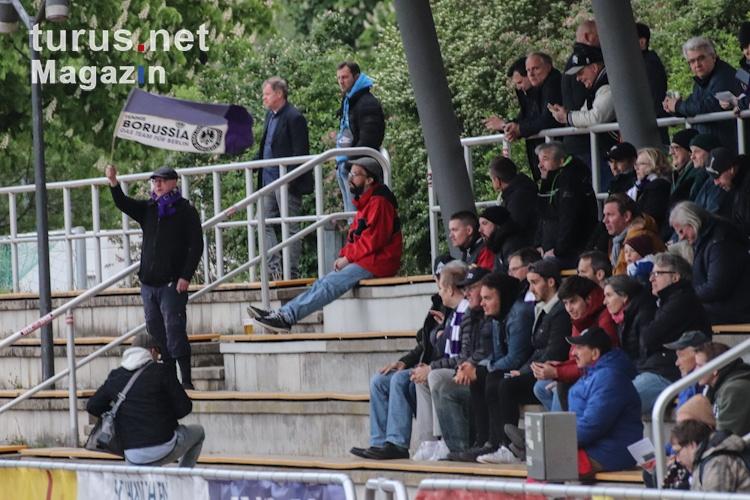 fc_hertha_03_zehlendorf_vs_tennis_borussia_berlin_20190504_2016819491.jpg
