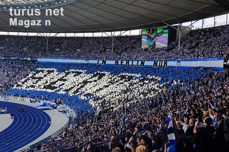 hertha_bsc_vs_bayer_04_leverkusen_20190520_1568169365_2019-05-20.jpg