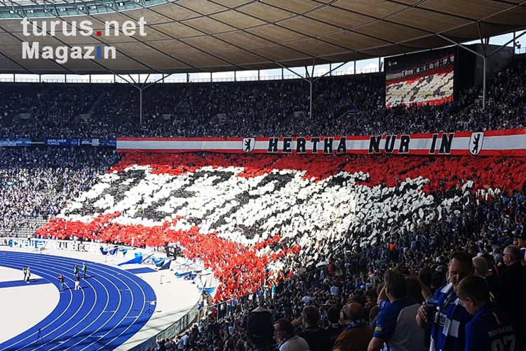 hertha_bsc_vs_bayer_04_leverkusen_20190520_1624458369_2019-05-20.jpg