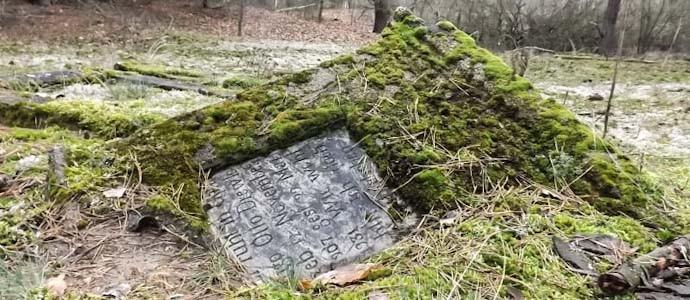 Geschichten aus dem Warta-Landschaftspark: Gräber, Skelette und wunderbare Natur