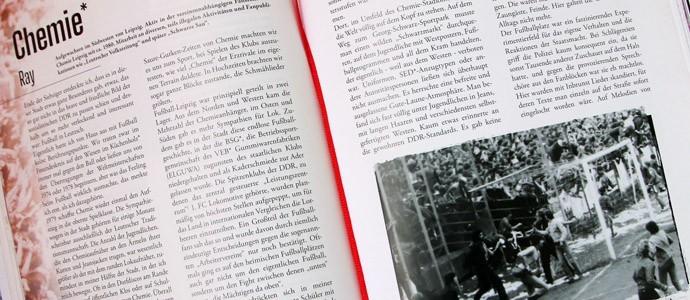 """""""Haare auf Krawall"""": Punks, Skins, Beatniks und Fußballfans - unangepasst in der DDR"""
