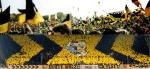 Dynamisch wie eh und je: Vor acht Jahren wurde das neue Stadion in Dresden eröffnet