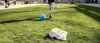 In Berlin rollt wieder der Ball - zumindest im Körnerpark…