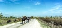 Eine Reise durch Albanien: Gruselige Spuren der Diktatur und grandiose Landschaften