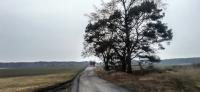 Sibirischer Hauch: Eine Wanderung zur Lesung im Landgasthof Niegisch