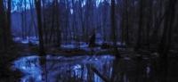 Bei Dämmerung durchs mystische Briesetal: In Gedanken durch Raum und Zeit