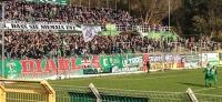 BSG Chemie Leipzig vs. FSV Zwickau: Chemische Pokalüberraschung in Leutzscher Hölle