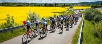 Lucinda Brand gewinnt die Tour durch die riesigen Felder mit den gelben Blumen