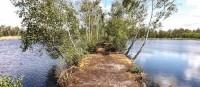 Der Sumpf Chlebowo - ein Geheimtipp für Naturliebhaber