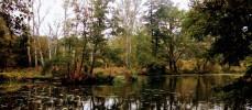 Auch in Brandenburger Wildnis kann man sich verirren…