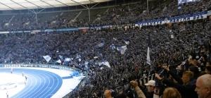 Hertha BSC vs. 1. FC Köln: Ibisevic lässt zaghafte Europapokalträume aufkommen