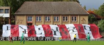 SG Dynamo Schwerin: Jedes Heimspiel ein Ausrufezeichen für die Paulshöhe!