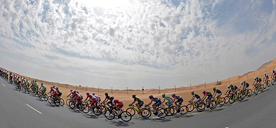 Dubai tour 2014