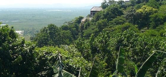 Christina Haverkamp: Jahrelanges Engagement für die Yanomami