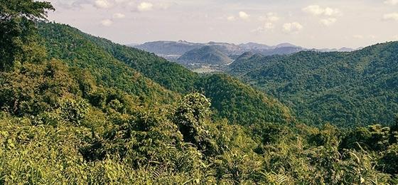 Thailand das überlaufende unentdeckte Land: Ein Besuch im Khao Yai