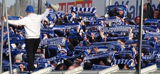 Würzburger Kickers vs. 1. FC Magdeburg: Überzeugender Auftritt der FCM-Fans